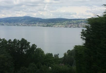 Quiet+picturesque location, only 1/2 h from Zurich - Wollerau - Leilighet