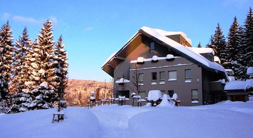 Lovely apartment on begest Czech mountains - Harrachov - อพาร์ทเมนท์