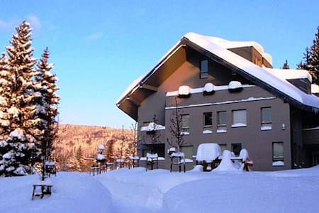 Lovely apartment on begest Czech mountains - Harrachov - Apartment