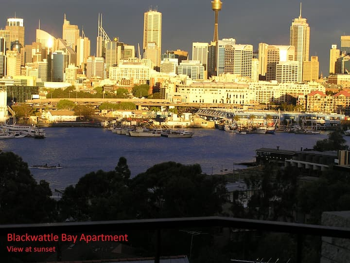 Blackwattle Bay Apartment