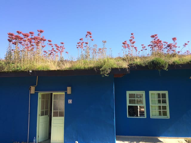 GREEN ROOF HOUSE w POOL- CASA ECOLOGICA c piscina