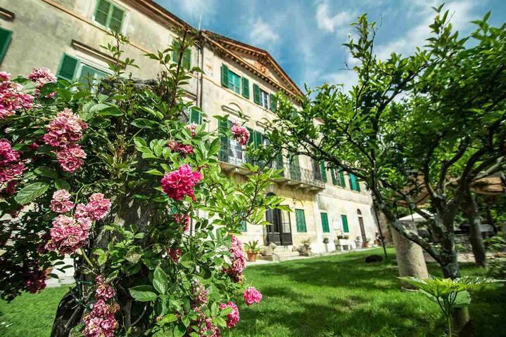 Amazing Tuscan Villa with seaview
