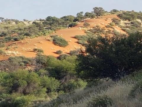 Kowes farm - enroute Kgalagadi Transfrontier Park