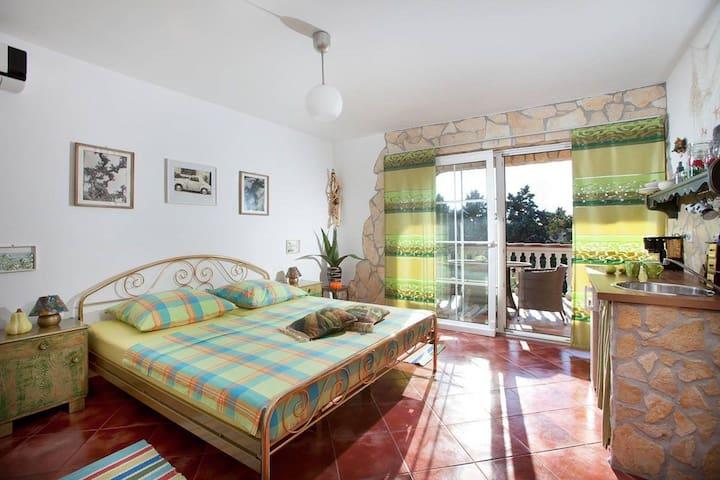 Apartment Villa Šandor - adults only (16272-A5)