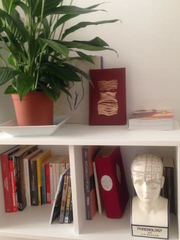 """Living-Room 3/4 - A very kind and cool plant called """"Laurence"""" purifies the air between a lot of art books"""