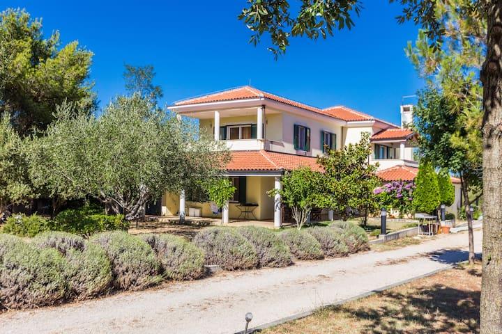 Hacienda Klarić - Bila Vlaka - Villa
