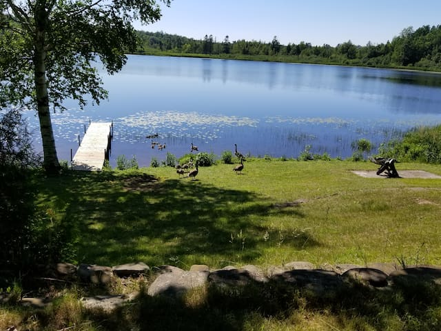 Private dock on Furnace Lake, along with wildlife (be careful where you walk, lol)