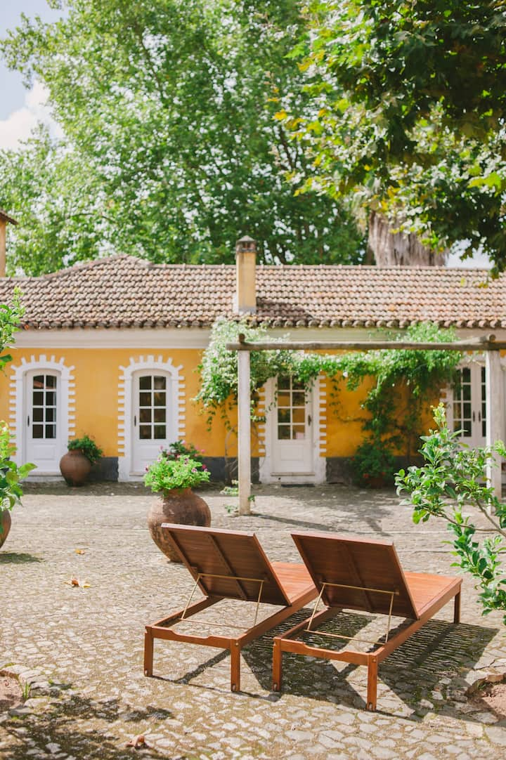 Lemongarden cottage: near Lisbon and Ericeira