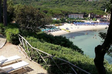 SPLENDIDA VILLA a 20 metri dal mare - Isola d Elba - Procchio