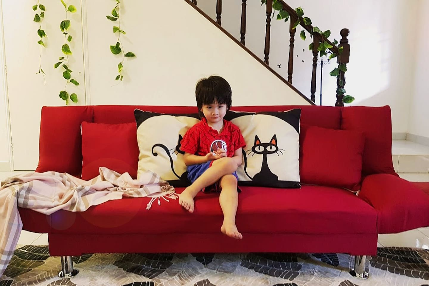 1- Cover Photo. Lucas on the red couch