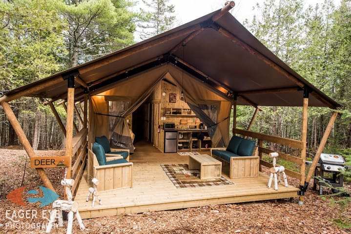 Private, secluded Glamping in Bar Harbor,  Deer