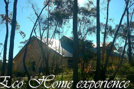 Cosy room, meals, transfer etc for Solo traveller - Hazelbrook - Casa