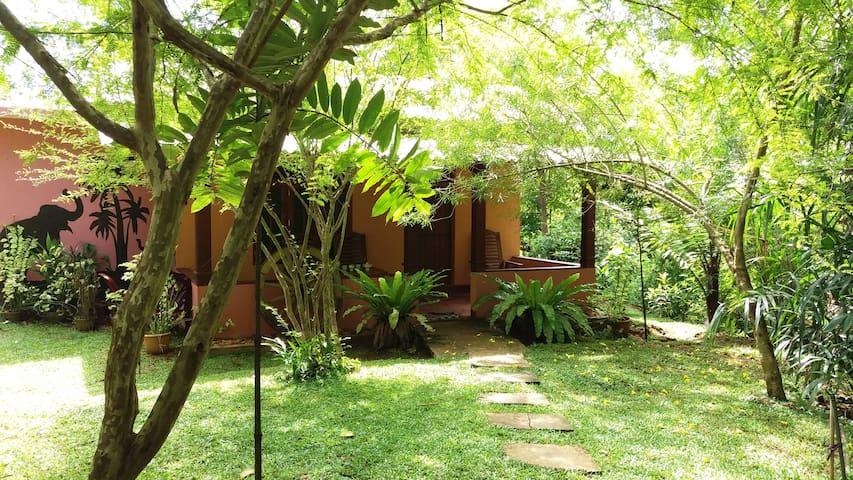 Walawa Blue Sapphire Holiday Risort - Udawalawa - Maison
