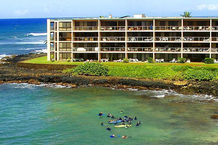Ocean, Beach, Turtles, and Fish At Your Doorstep - Koloa - Condomínio
