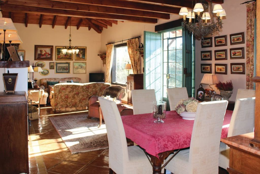Salon-comedor / Living-Dining area