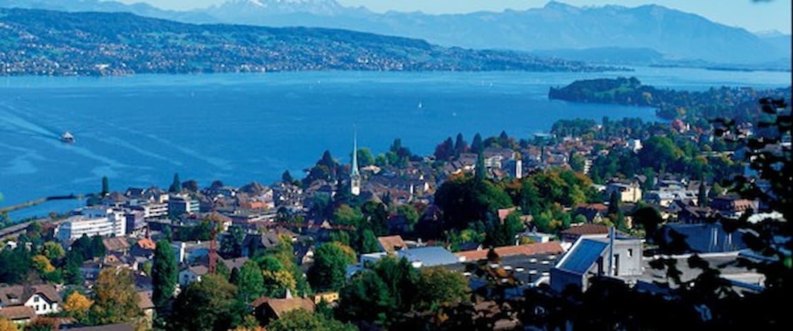 Nice room close to the Zurich lake - Horgen - Casa