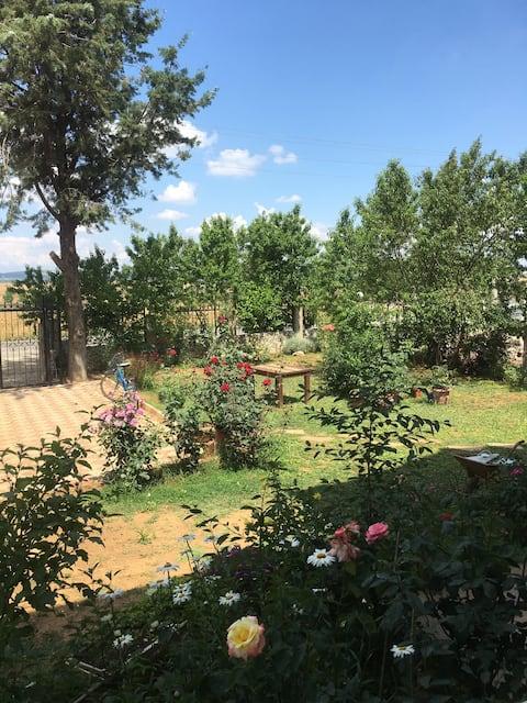 Saros körfezinde verandalı bahçe katı Daire