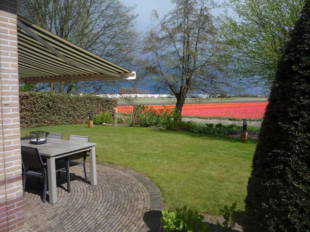 Luxe vakantiewoning aan de tulpenvelden en duinen