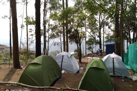 MUNNAR JUNGLE CAMP