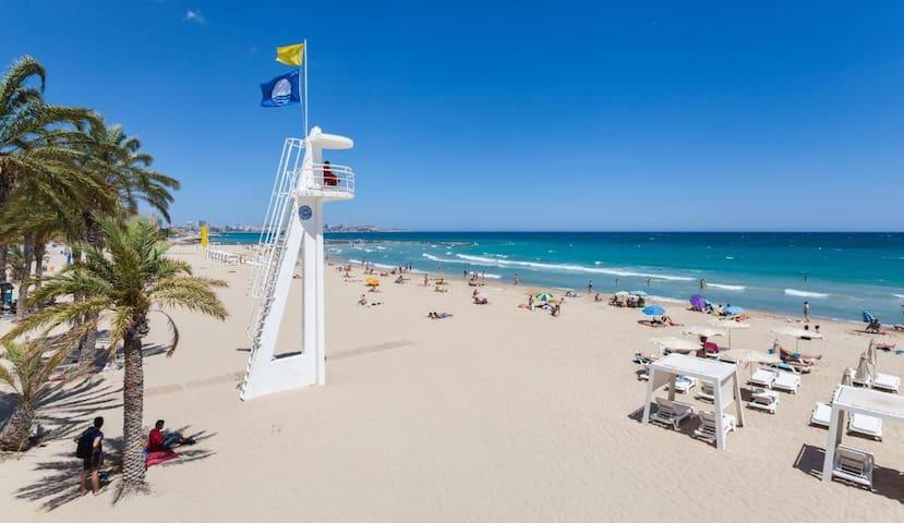 Perfect Apartment near the Beach