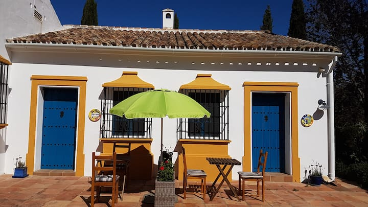 1 bed Casita Higo with olivegrove & pool Ronda 9km