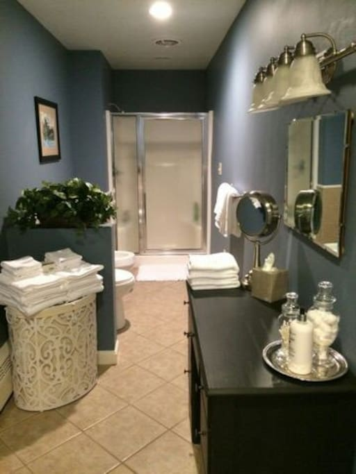 Room For Rent Near Pittsburgh Airport