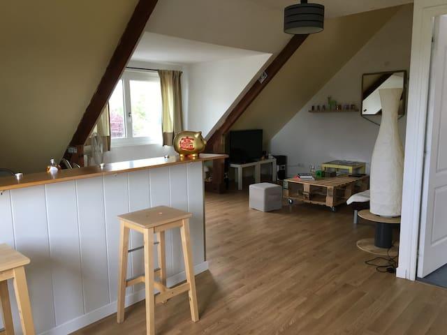 appartement Albatros