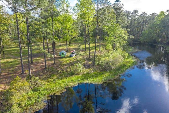 Jim's Lake Edge at Charleston Woodlands