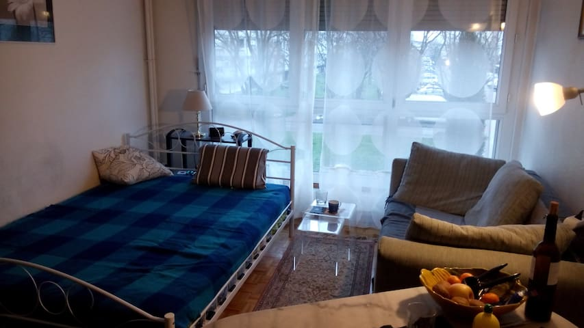 Studio close to Geneva city center - Meyrin - Apartamento