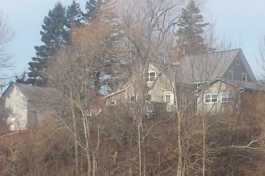 Rear view of Sal's Place during the winter months from the Annapolis River.