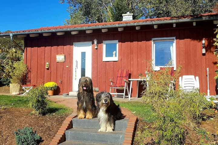 Gezellig vakantiehuis in het Ederbergland - honden zijn welkom