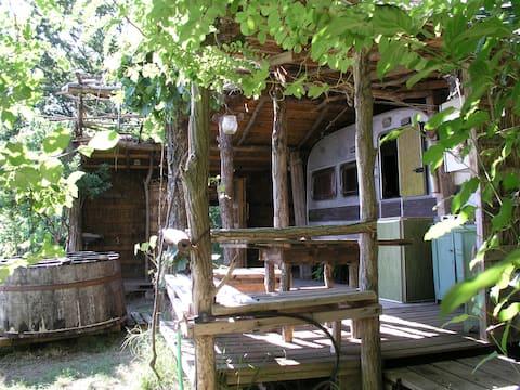 Romantic Roulotte + Camping  in Italian Vineyard