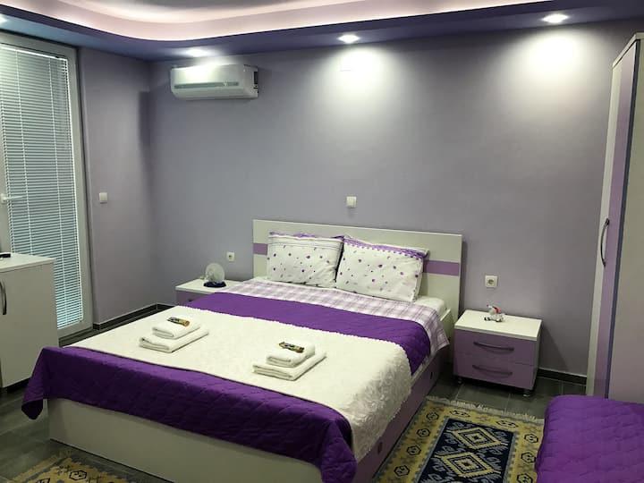 New, best location, villa Metulevi