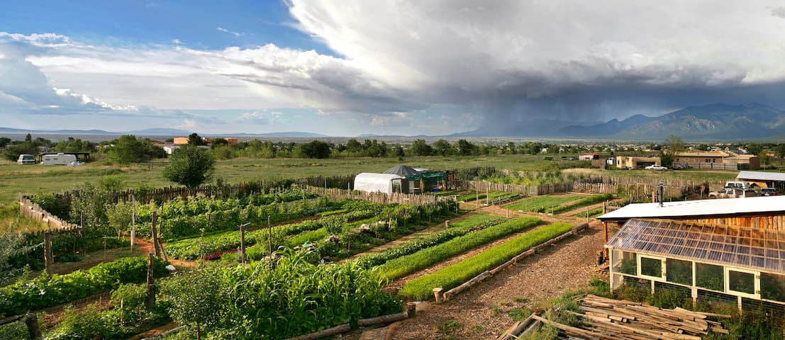 Stay on a real Organic Farm!