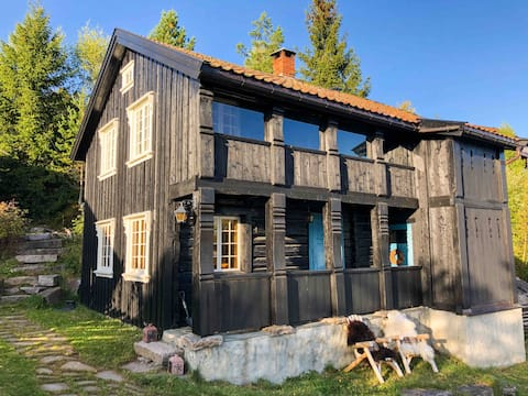 Cosy and modern mountain cabin from 1842