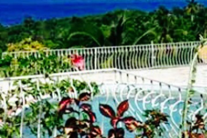 Montego Bay Jamaica Thrifty Getaway Fun in the Sun - Montego Bay - Huis
