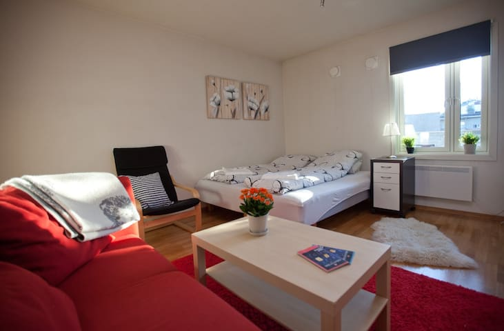 Great Room with Breakfast Close to Central Station - Oslo - Wohnung