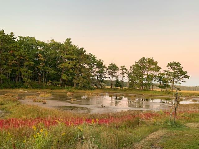 Charming Designer Cottage on Marsh / Fall Getaway!