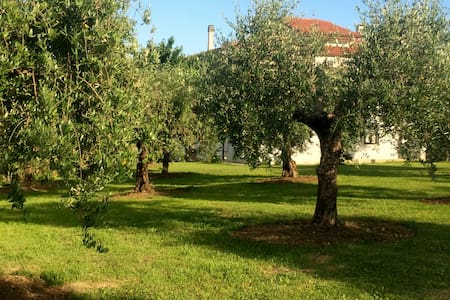 Bed & Breakfast Morganti - Torano nuovo - Bed & Breakfast