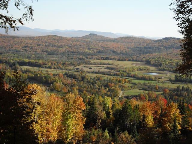 Fall Vista