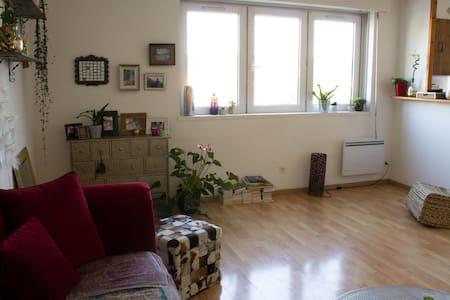 Appartement cosy 50m², calme, proche centre-ville - Lägenhet