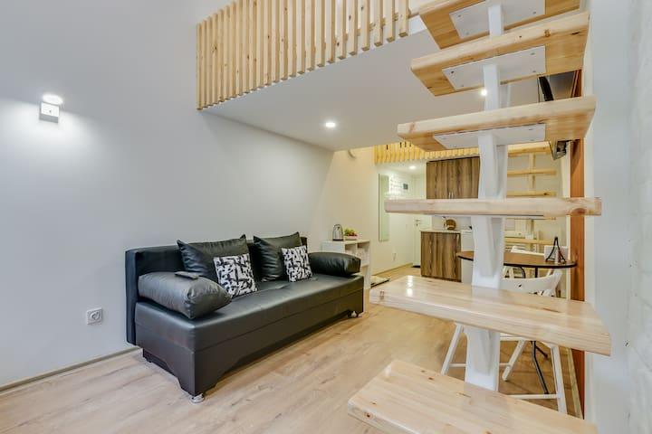 Уютные апартаменты люкс на Зверинской