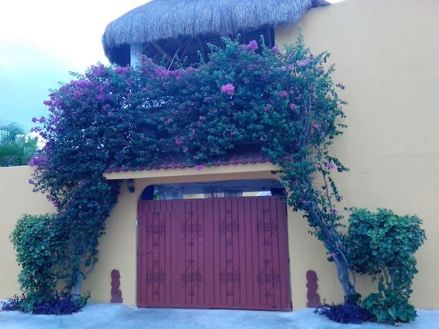 Casa Caballitos - a tropical paradise on Cozumel - Cozumel - Appartement