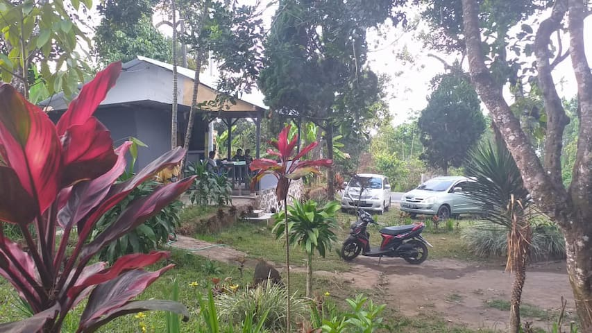 Bukit Senaru Homestay