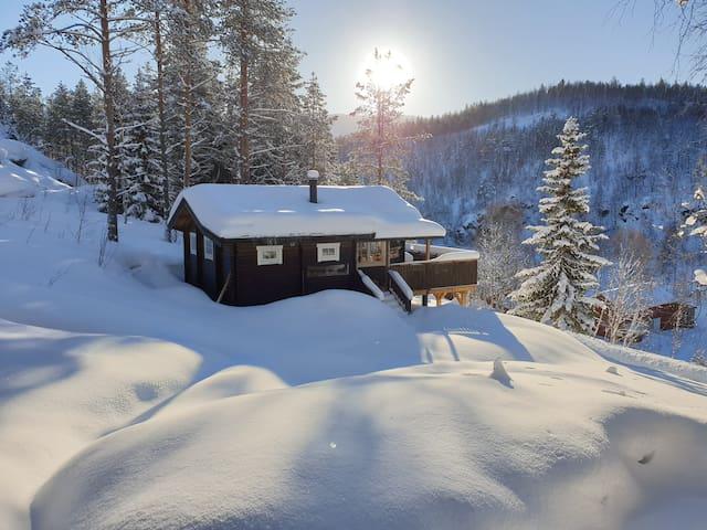 Cabin in Dividalen