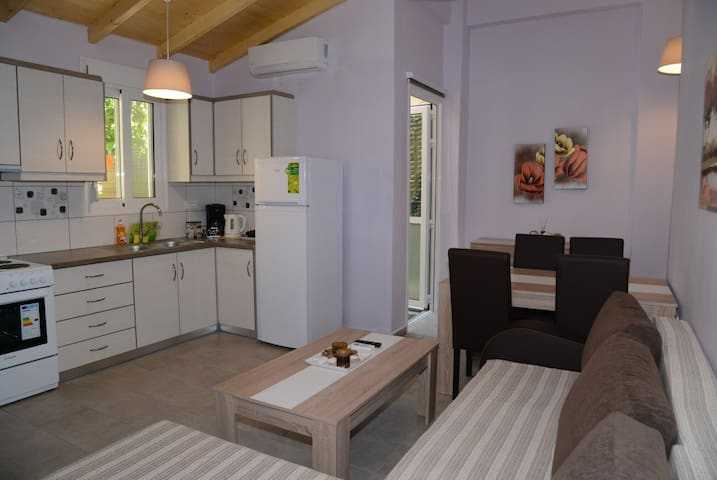 NEW apartment Nafplio, at foot of Palamidi 1 - Nafplio - Flat