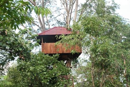 The Monkey Pod Treehouse
