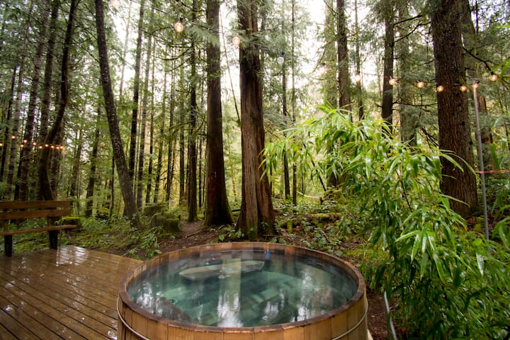 Reach out and touch Gifford Pinchot National Forest from our soaking tub.