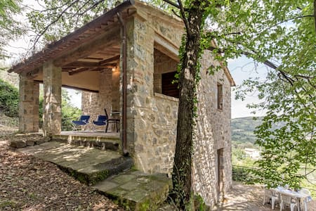 Tuscan farm with pool in the nature - Seggiano