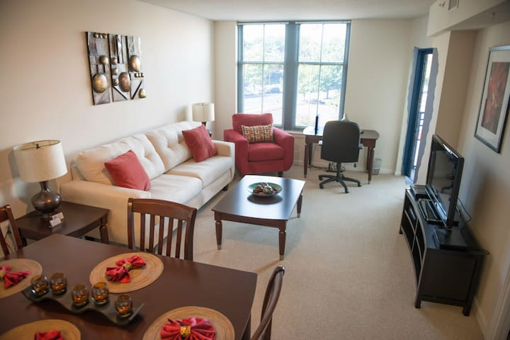 Furnished 1 BR Apt. in Pentagon City